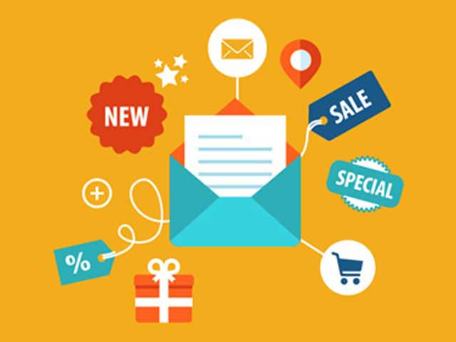 Email Marketing Professional